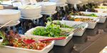 Important Tips When Choosing a Vegetarian Catering Service